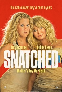 movie poster for Snatched